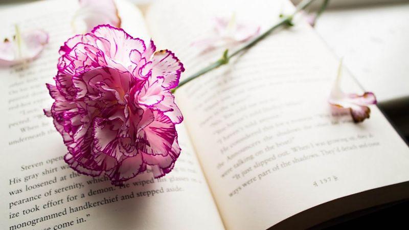позитивное мышление книги, книги о силе мысли, книги про позитивное мышление, книги о подсознании, что почитать